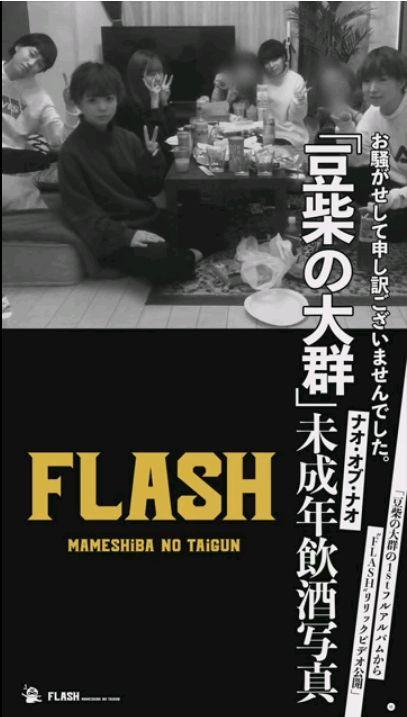 豆柴の大群「FLASH」