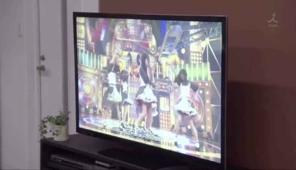 豆柴の大群がTVの中に出演