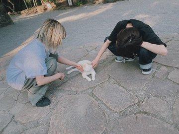 猫と・・・